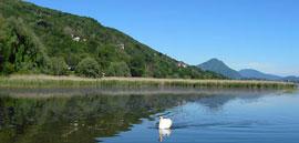 Lagoni di Mercurago, een wetland met leuke themapaden