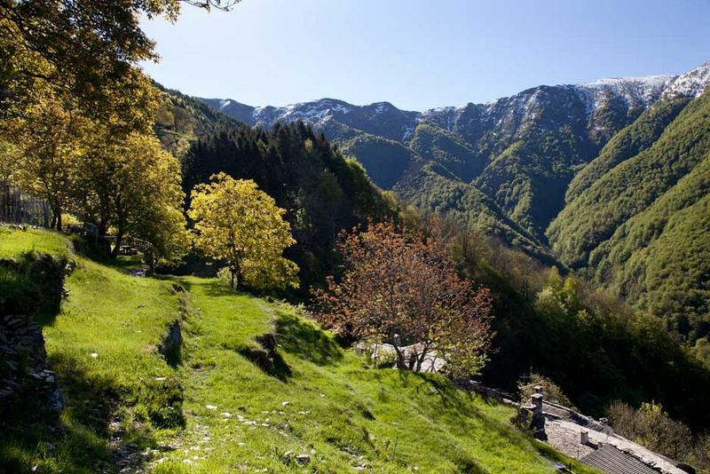 Lagomaggiore_natuur-Val-Veddascak.jpg